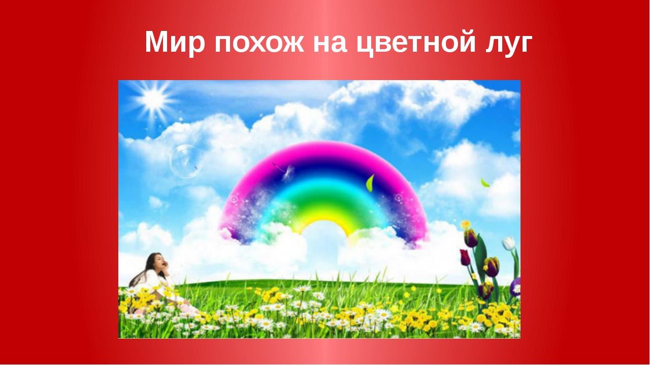 Мир похож на цветной луг