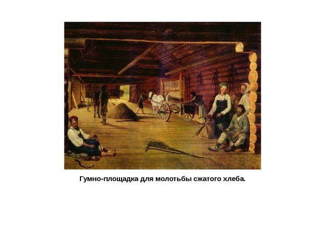 Гумно-площадка для молотьбы сжатого хлеба.