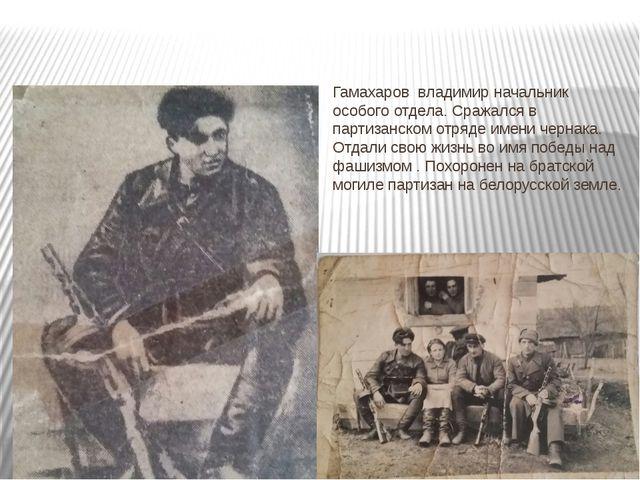 Гамахаров владимир начальник особого отдела. Сражался в партизанском отряде и...