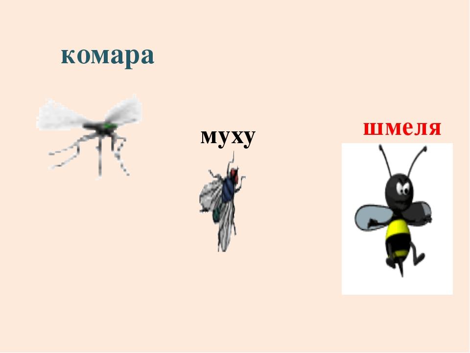 комара муху шмеля