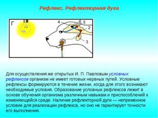 Рефлекс. Рефлекторная дуга Для осуществления же открытых И. П. Павловым услов