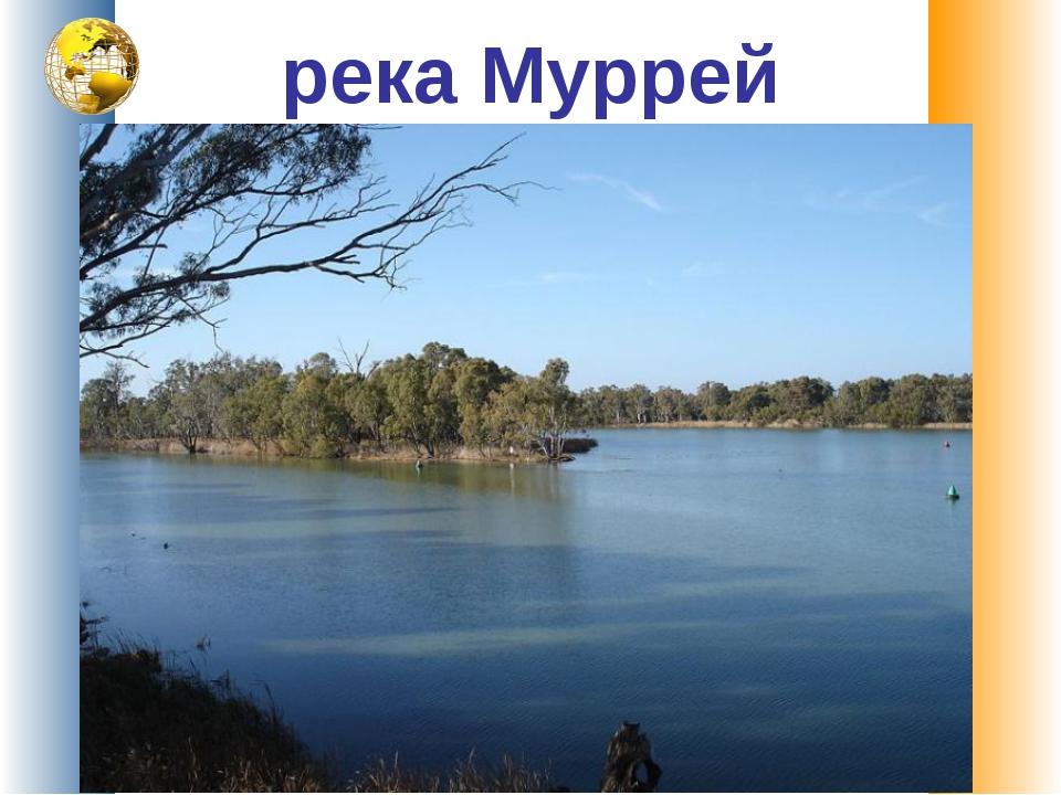 река Муррей
