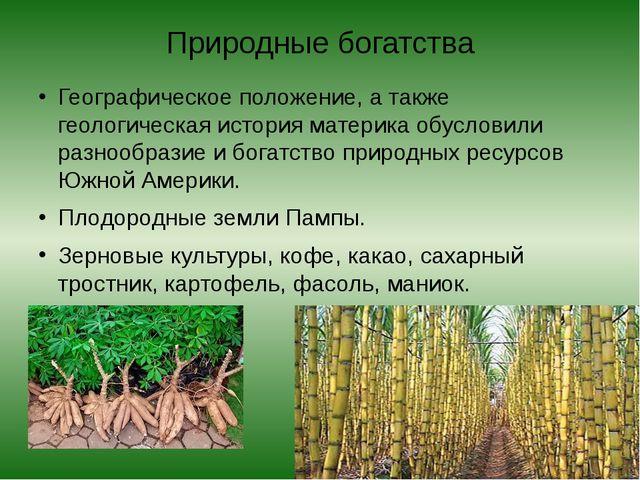 Природные богатства Географическое положение, а также геологическая история м...