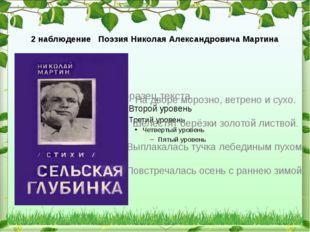 2 наблюдение Поэзия Николая Александровича Мартина На дворе морозно, ветрено