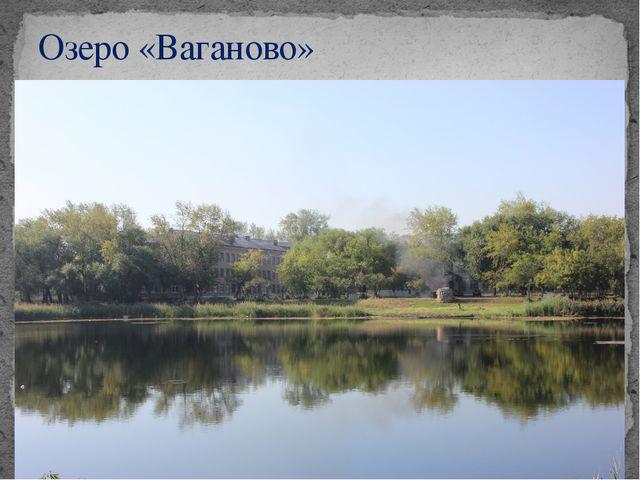 Озеро «Ваганово»