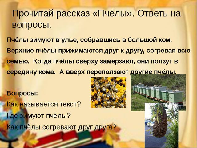 Прочитай рассказ «Пчёлы». Ответь на вопросы. Пчёлы зимуют в улье, собравшись...