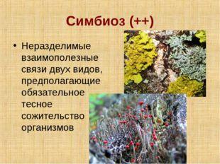 Симбиоз (++) Неразделимые взаимополезные связи двух видов, предполагающие обя