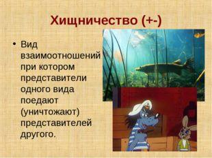Хищничество (+-) Вид взаимоотношений при котором представители одного вида по