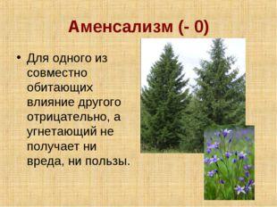 Аменсализм (- 0) Для одного из совместно обитающих влияние другого отрицатель