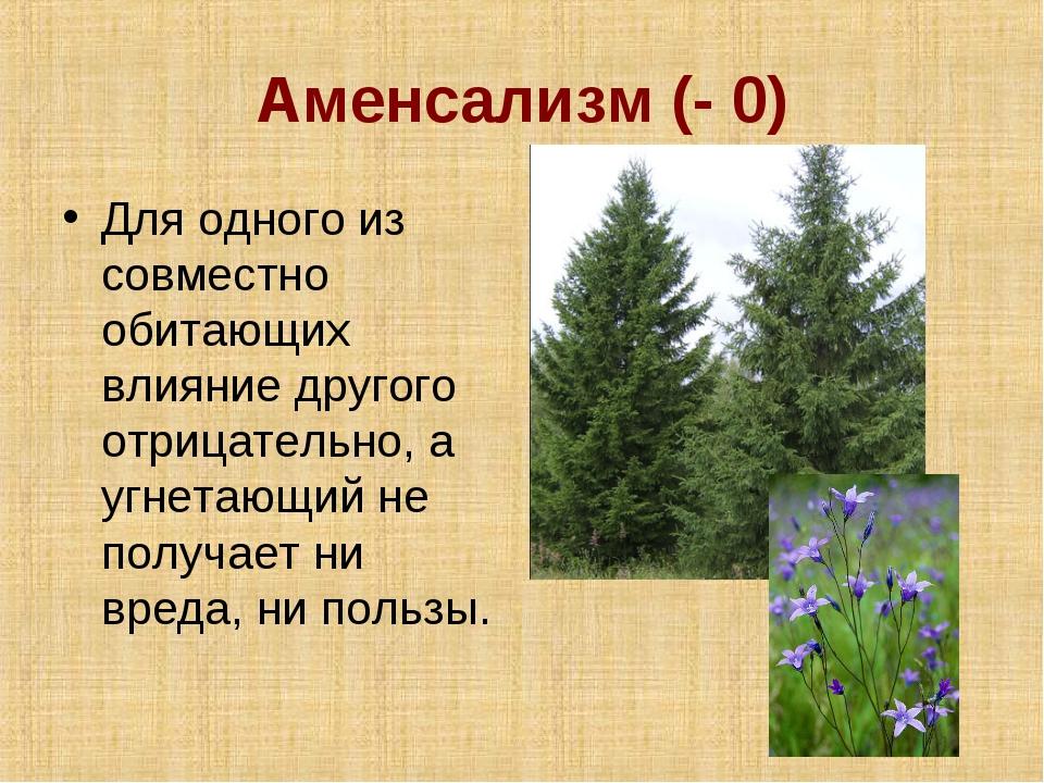 Аменсализм (- 0) Для одного из совместно обитающих влияние другого отрицатель...