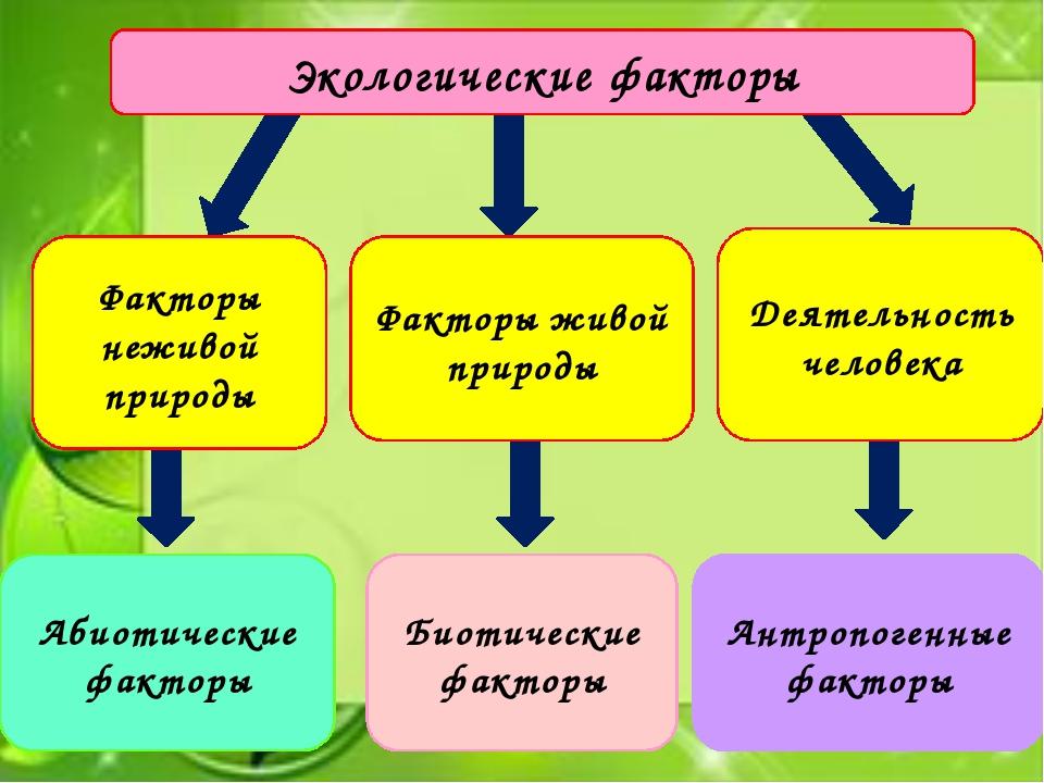 Экологические факторы Факторы неживой природы Факторы живой природы Деятельн...