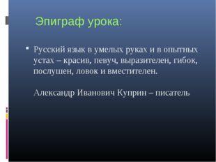 Эпиграф урока: Русский язык в умелых руках и в опытных устах – красив, певуч,