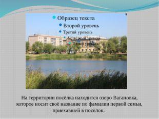 На территории посёлка находится озеро Вагановка, которое носит своё название