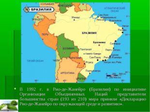 В 1992 г. в Рио-де-Жанейро (Бразилия) по инициативе Организации Объединенных