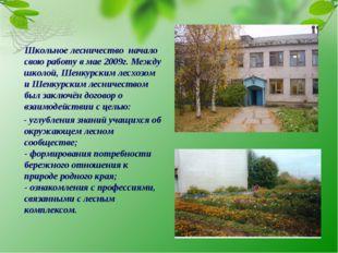 Школьное лесничество начало свою работу в мае 2009г. Между школой, Шенкурски