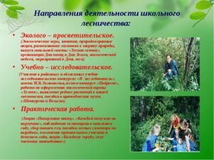 Направления деятельности школьного лесничества: Эколого – просветительское. (