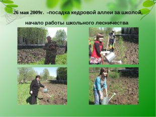 26 мая 2009г. –посадка кедровой аллеи за школой, начало работы школьного лесн