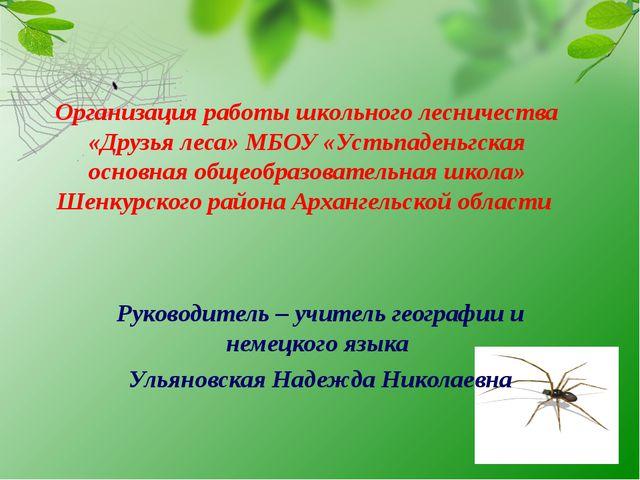 Организация работы школьного лесничества «Друзья леса» МБОУ «Устьпаденьгская...
