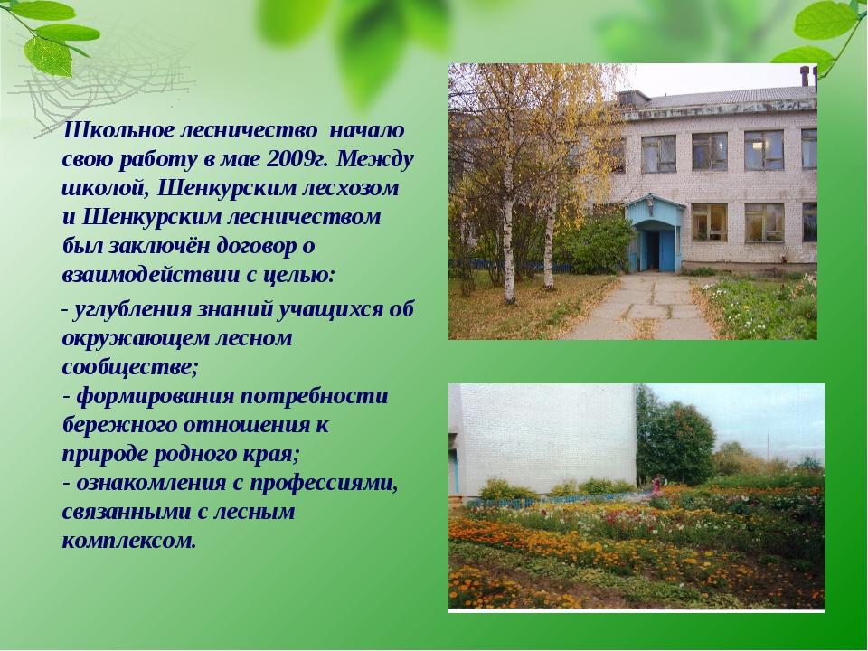 Школьное лесничество начало свою работу в мае 2009г. Между школой, Шенкурски...