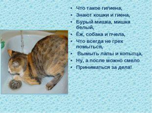 Что такое гигиена, Знают кошки и гиена, Бурый мишка, мишка белый, Ёж, собака
