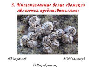 5. Многочисленные белые «домики» являются представителями: Д) Кораллов Р) Рак