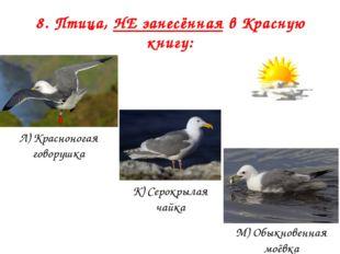 8. Птица, НЕ занесённая в Красную книгу: Л) Красноногая говорушка К) Серокрыл