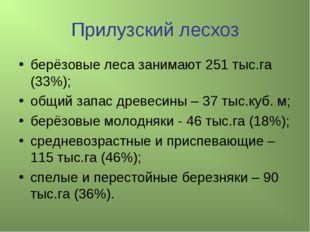 Прилузский лесхоз берёзовые леса занимают 251 тыс.га (33%); общий запас древе