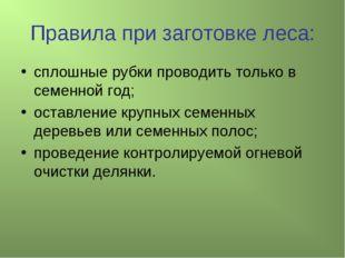 Правила при заготовке леса: сплошные рубки проводить только в семенной год; о