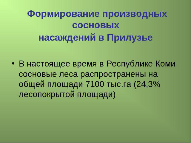 Формирование производных сосновых насаждений в Прилузье В настоящее время в Р...