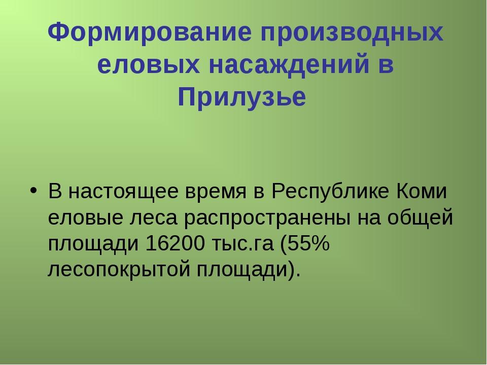 Формирование производных еловых насаждений в Прилузье В настоящее время в Рес...