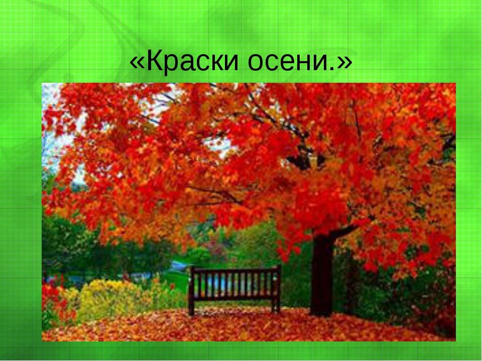 «Краски осени.»
