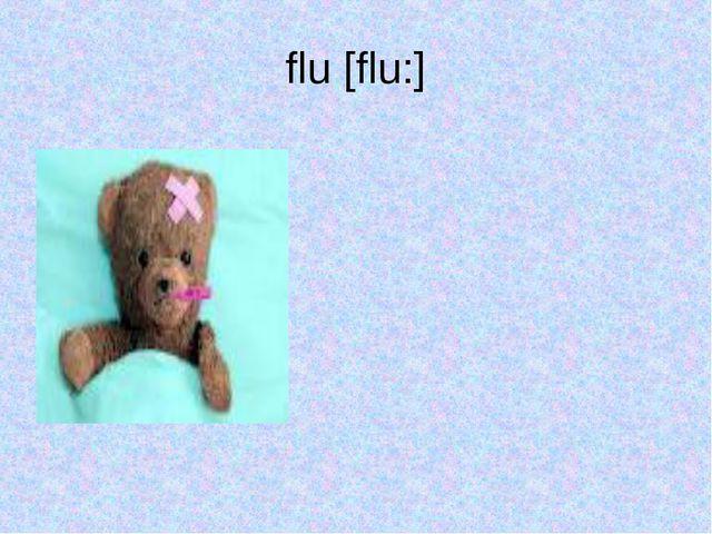 flu [flu:]