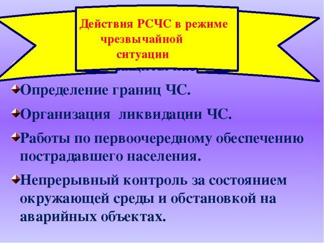 Структура сил и средств РСЧС