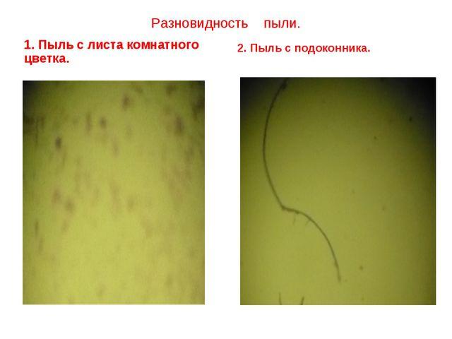 Разновидность пыли.  1. Пыль с листа комнатного цветка. 2. Пыль с подоконника.