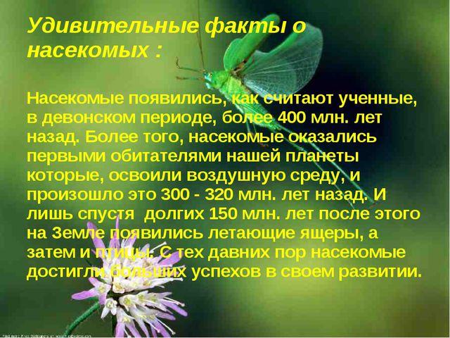 Удивительные факты о насекомых : Насекомые появились, как считают ученные, в...