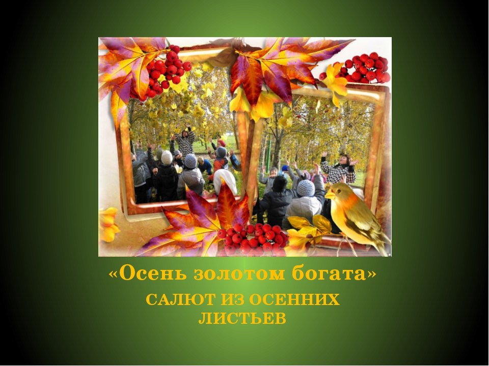 «Осень золотом богата» САЛЮТ ИЗ ОСЕННИХ ЛИСТЬЕВ