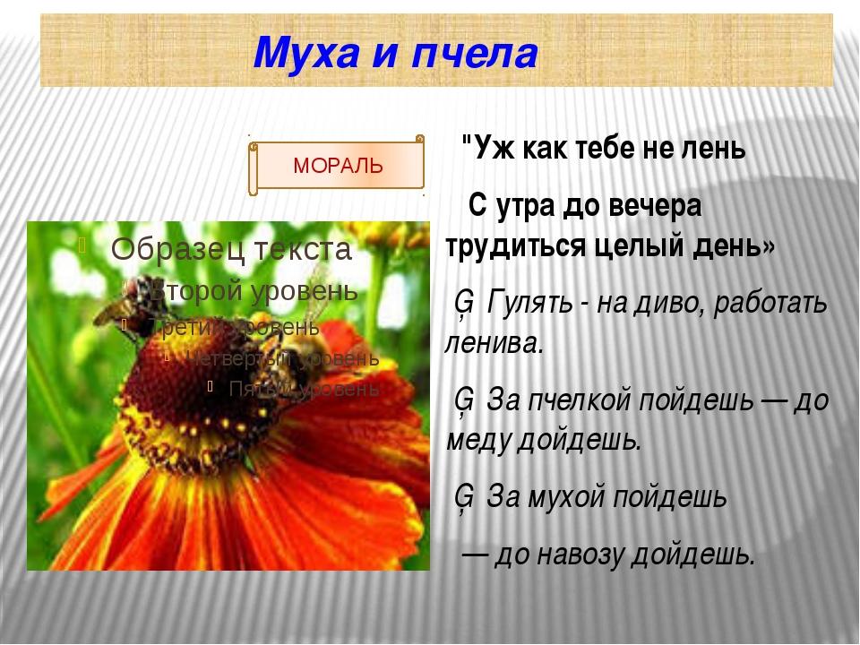 """Муха и пчела """"Уж как тебе не лень С утра до вечера трудиться целый день» ▪ Г..."""