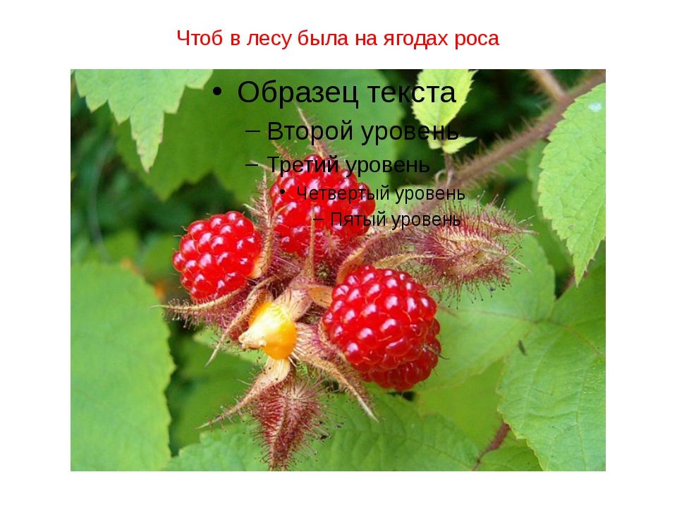 Чтоб в лесу была на ягодах роса