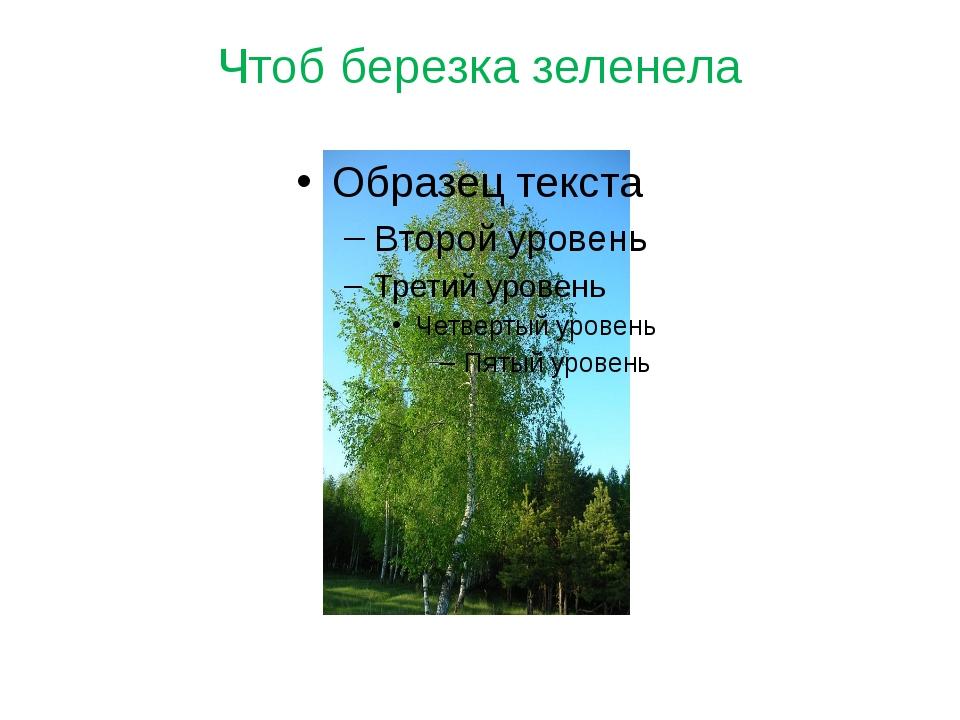 Чтоб березка зеленела