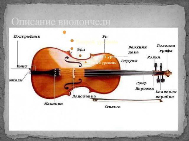 Описание виолончели