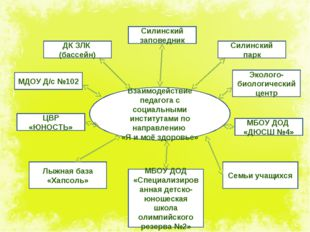 Взаимодействие педагога с социальными институтами по направлению «Я и моё здо