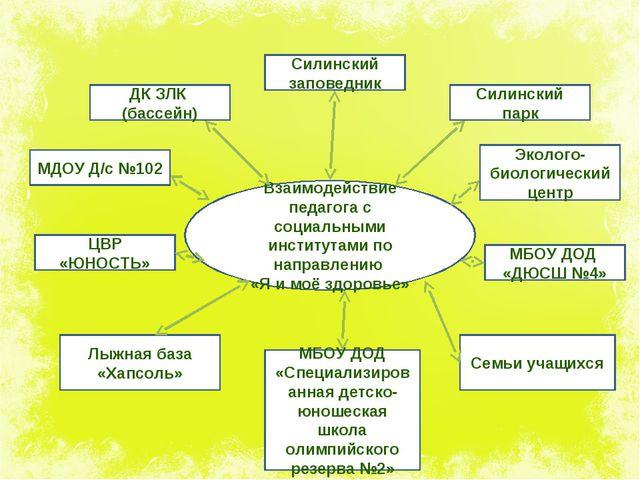 Взаимодействие педагога с социальными институтами по направлению «Я и моё здо...