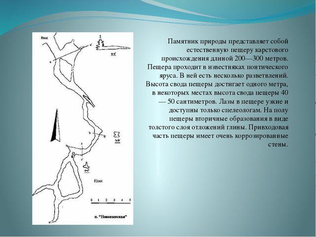 Памятник природы представляет собой естественнуюпещеру карстового происхожде...