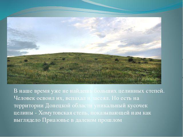 В наше время уже не найдешь больших целинных степей. Человек освоил их, вспах...