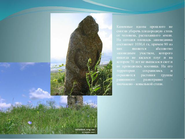 Каменные идолы прошлого не смогли уберечь плодородную степь от человека, расп...