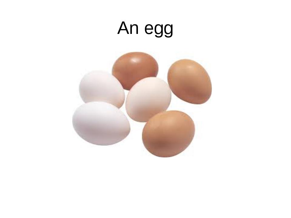An egg