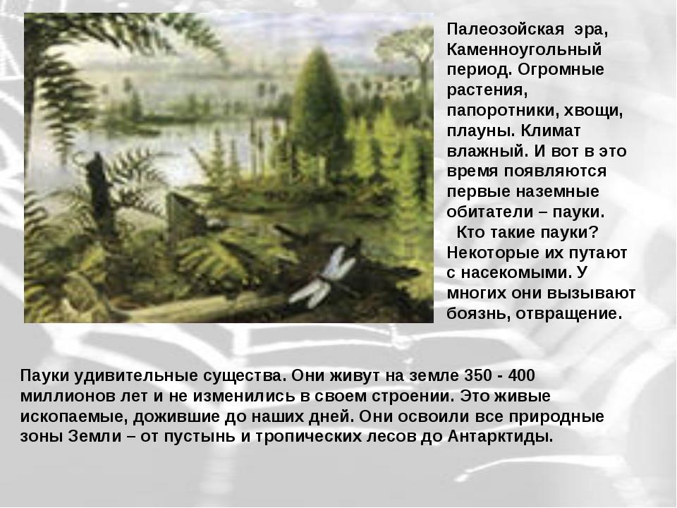Палеозойская эра, Каменноугольный период. Огромные растения, папоротники, хво...