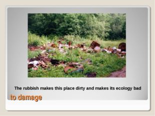 to damage The rubbish makes this place dirty and makes its ecology bad