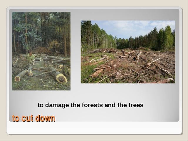 to cut down to damage the forests and the trees