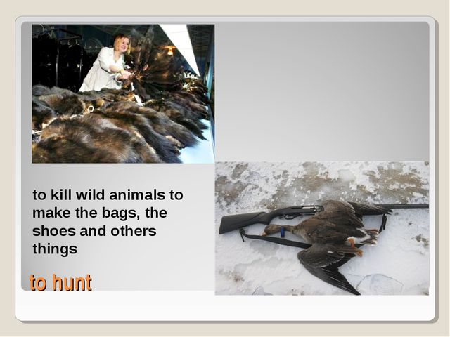 to hunt to kill wild animals to make the bags, the shoes and others things